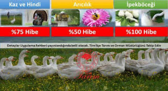 Arıcılık, ipek böcekçiliği, kaz ve hindi yetiştiriciliğine hibe desteğinebaşvuruiçin son gün 22 Ocak