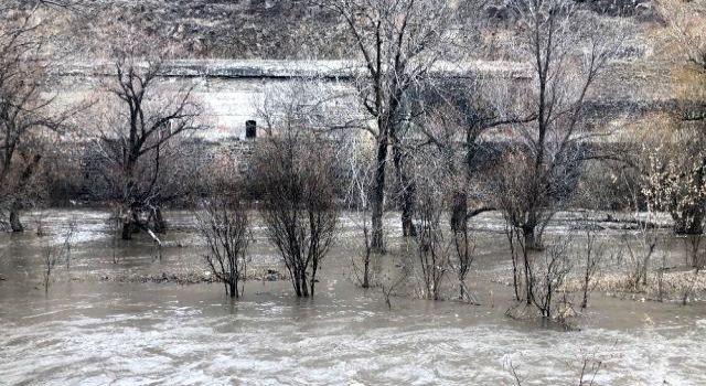 Kars Çayı taştı, ağaçlar sular altında kaldı | Kars Haber